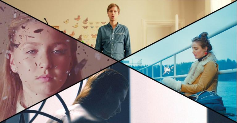 Musikkvideornitologi