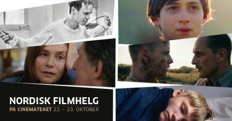 Har Nordisk råds filmpris prestisjen den fortjener?
