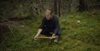 Directors Cut: Hoggeren