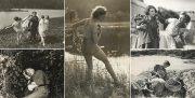 Frislipp av 2600 stillbilder fra norske langfilmer