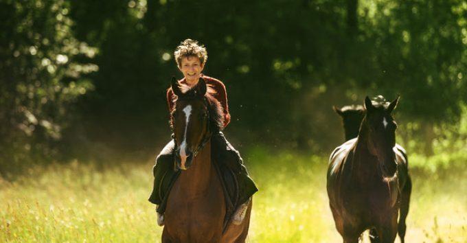 Fem Amandapriser til «Ut og Stjæle hester»