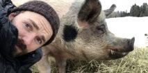 – Dyrene skulle være våre superstjerner (+)